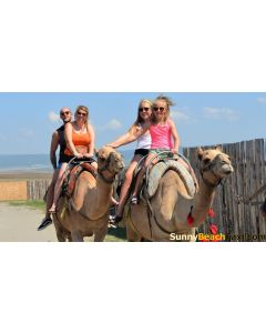 Taxi shuttle from Sunny Beach Vlas Elenite Nesebar Kosharitsa Ravda to Camel Park