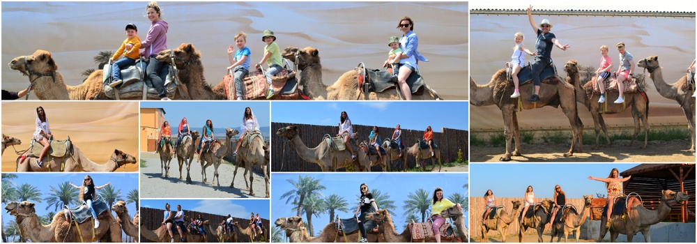 Taxi from sunny beach to Camel PArk